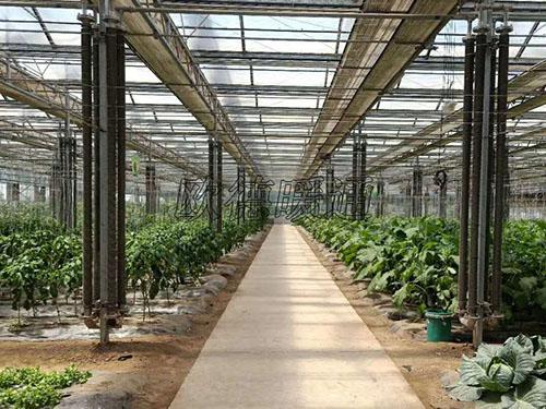 蔬菜/花卉大棚翅片管散热器
